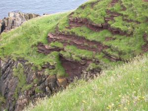 Edinburgh to Siccar Point June-Jly 2012 051